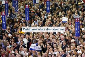 delegates elect