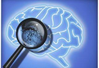 brain_fingerprinting